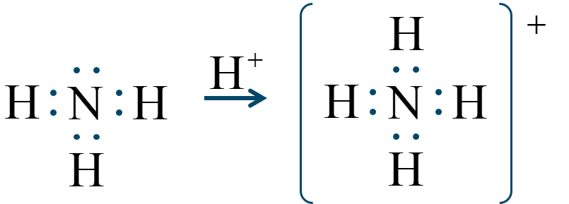 アンモニウムイオン配位結合